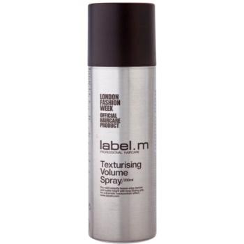 label.m Complete spray teksturyzujący dodający objętości