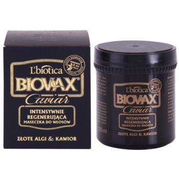 L'biotica Biovax Glamour Caviar máscara restauradora nutritiva com caviar 1