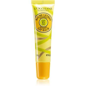 L'Occitane Shea Butter Bergamot Lip Balm balsam de buze unt de shea