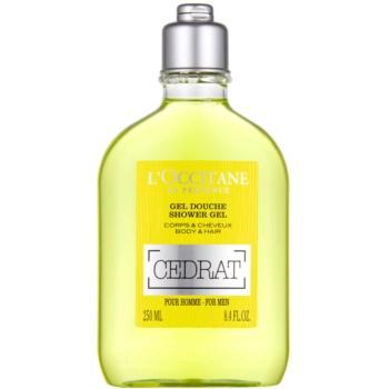 Fotografie L'Occitane Cedrat sprchový gel na tělo a vlasy 250 ml
