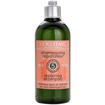 Fotografie L'Occitane Hair Care regenerační šampon pro suché a poškozené vlasy 300 ml
