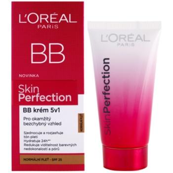 L'Oréal Paris Skin Perfection crema BB 5 in 1 SPF 25 1