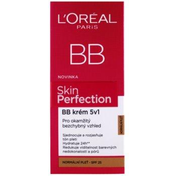 L'Oréal Paris Skin Perfection crema BB 5 in 1 SPF 25 2
