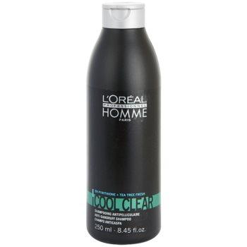 Fotografie L'Oréal Professionnel Homme Cool Clear šampon proti lupům 250 ml
