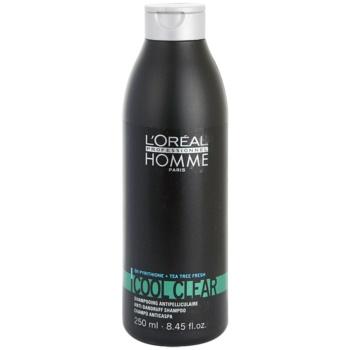 L'Oréal Professionnel Homme Cool Clear sampon anti-matreata  250 ml