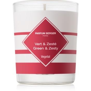 Maison Berger Paris Anti Odour Kitchen lumanari parfumate 180 g I. (Green and Zesty)