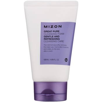 Mizon Great Pure spuma de curatat fata