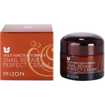 Mizon Multi Function Formula Hautcreme mit Filtrat aus Schneckensekret 60% 3
