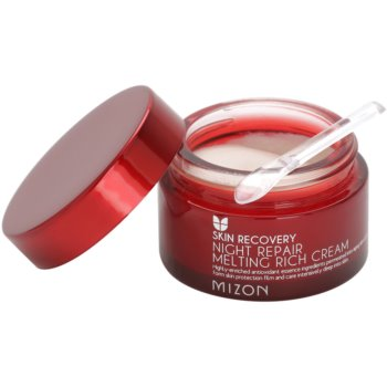 Mizon Skin Recovery Anti-Aging Nachtcreme zur Verjüngung der Gesichtshaut 1