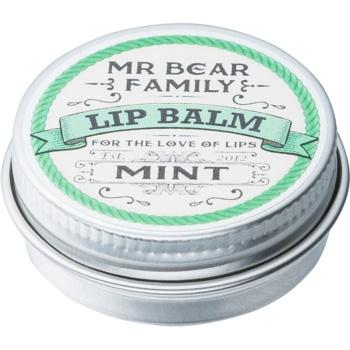 Mr Bear Family Mint balsam de buze pentru barbati