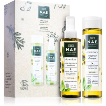 N.A.E. Riparazione set cadou (pentru păr)