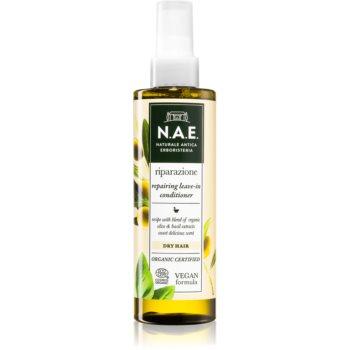 N.A.E. Riparazione balsam sub forma de spray pentru par uscat imagine produs