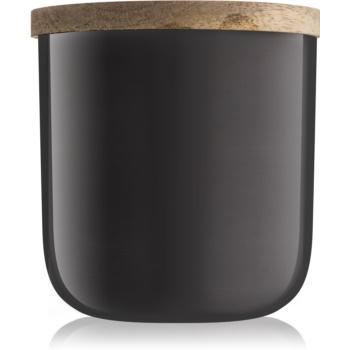 Paddywax Foundry Tobacco & Vanilla lumanari parfumate 340 g