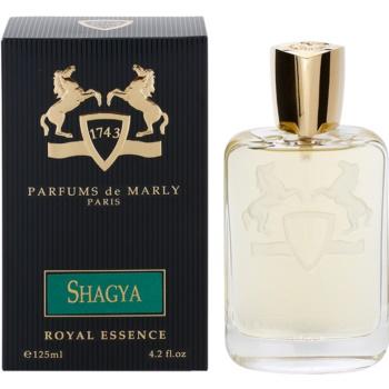 Fotografie Parfums De Marly Shagya Royal Essence parfemovaná voda pro muže 125 ml