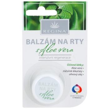 Regina Aloe Vera Balsam de buze hidratant cu aloe vera