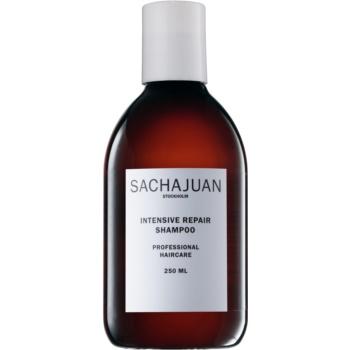 Sachajuan Cleanse and Care Intensive Repair șampon pentru părul deteriorat și întărit de soare
