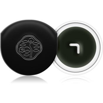 Shiseido Eyes Instroke Eyeliner eyeliner-gel cu aplicator