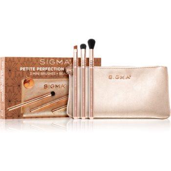 Sigma Beauty Rendezvous Petite Perfection Brush Set set de pensule cu geantă