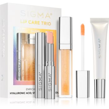 Sigma Beauty Lip Care Trio set de cosmetice (de buze)