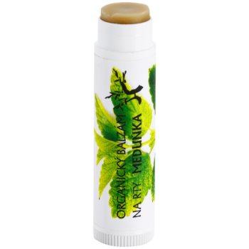 Soaphoria Lip Care bálsamo de lábios orgânico de melissa 1