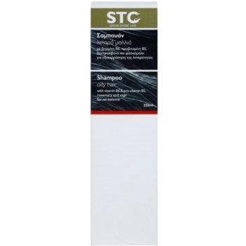 STC Hair шампоан за мазна коса 2