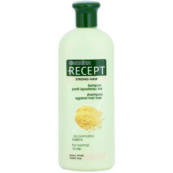 Subrina Professional Recept Strong Hair șampon impotriva caderii parului poza noua