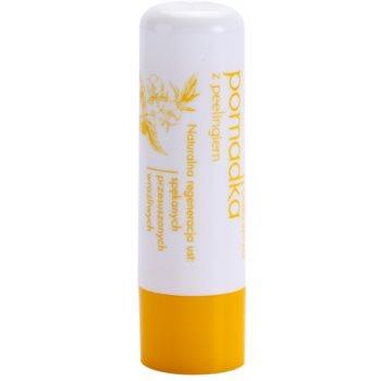 Sylveco Lip Care balsam de buze cu efect exfoliant
