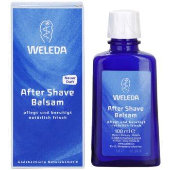 Weleda Men bálsamo after shave 1