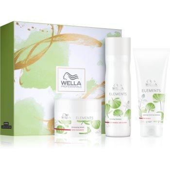 Wella Professionals Elements set cadou (pentru par deteriorat) imagine