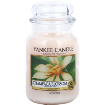 Yankee Candle Champaca Blossom Duftkerze   Classic groß
