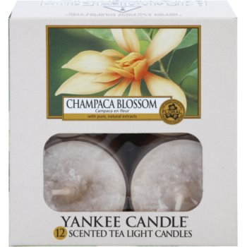 Yankee Candle Champaca Blossom Tealight Candle 2
