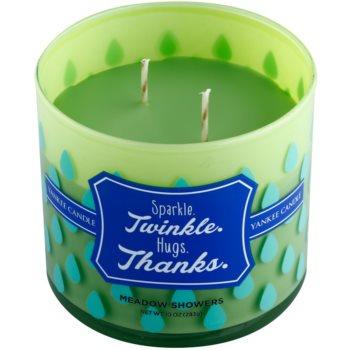 Yankee Candle Meadow Showers Duftkerze    (Sparkle. Twinkle. Hugs. Thanks.) 1