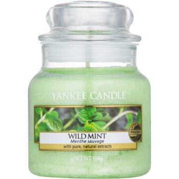 Yankee Candle Wild Mint lumanari parfumate 104 g Clasic mini