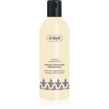 Ziaja Ceramides șampon intens cu efect de regenerare poza noua