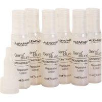 Regenerating Treatment For Damaged Hair