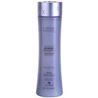 šampon pro okamžitou regeneraci