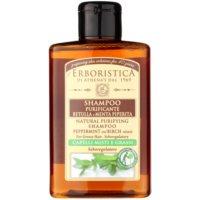 březový šampon s mátou na mastné vlasy