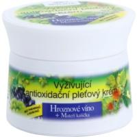 nährende Antioxidanscreme für das Gesicht