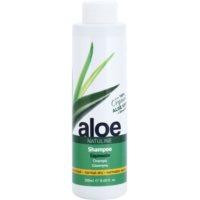 šampon pro normální až suché vlasy s aloe vera