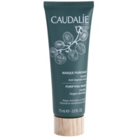 Cleansing Mask To Treat Skin Imperfections