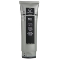Shampoo for Men 250 ml
