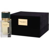 Dolce & Gabbana Velvet Vetiver eau de parfum mixte