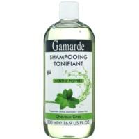 șampon pentru păr gras