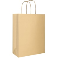 1 szt. torebka na prezent eco złota duża (220 x 290 x 100 mm)
