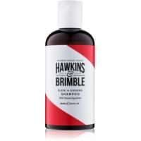 Shampoo für das Haar