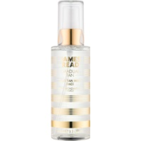 James Read Gradual Tan brume auto-bronzante visage