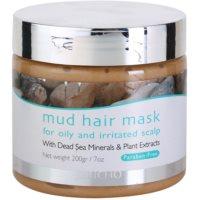 máscara de lama para cabelo para couro cabeludo oleoso e irritado