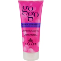 Restoring Shampoo For Dry And Brittle Hair
