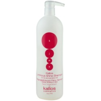 Radiance Shampoo For Dry And Sensitised Hair