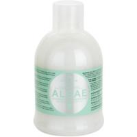 champú hidratante con extraco de algas y aceite de oliva